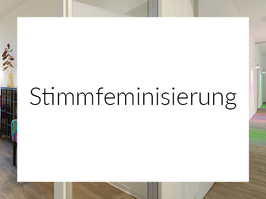 Stimmfeminisierung